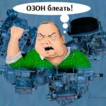 Карбюратор ОЗОН