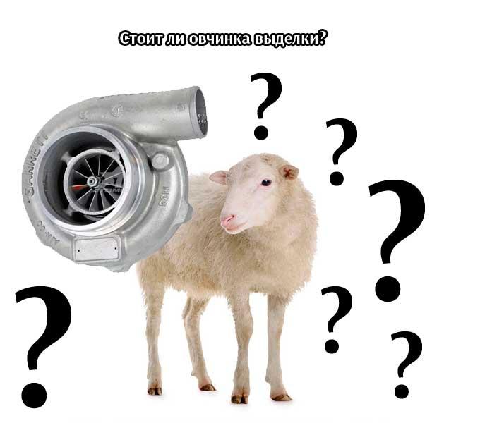 Стоит ли овчинка выделки